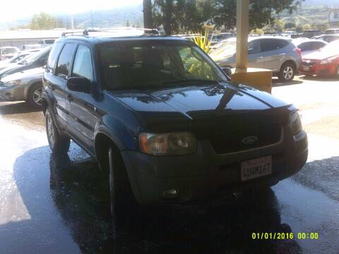 2002 Ford Escape for sale at Mendocino Auto Auction in Ukiah CA