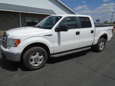 2010 Ford F-150 for sale at SWENSON MOTORS in Gaylord MN