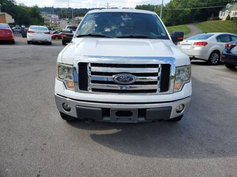 2011 Ford F-150 for sale at DISCOUNT AUTO SALES in Johnson City TN
