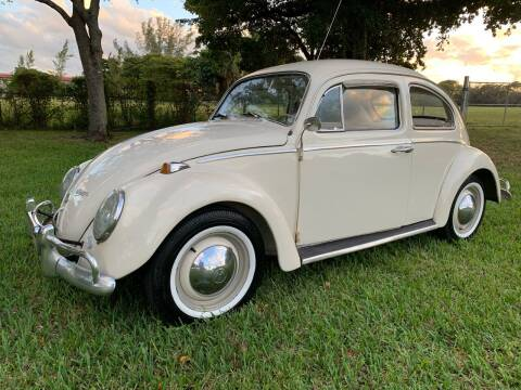 1965 Volkswagen Beetle for sale at Top Trucks Motors in Pompano Beach FL