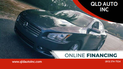 2010 Nissan Maxima for sale at QLD AUTO INC in Tampa FL