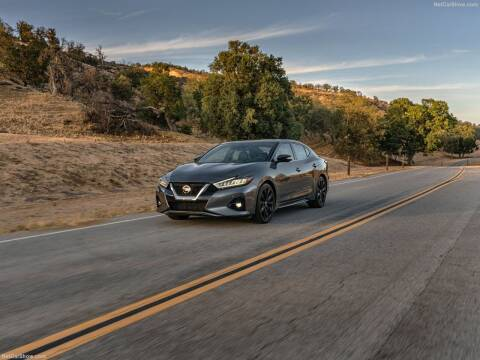 2021 Nissan Maxima for sale at Xclusive Auto Leasing NYC in Staten Island NY