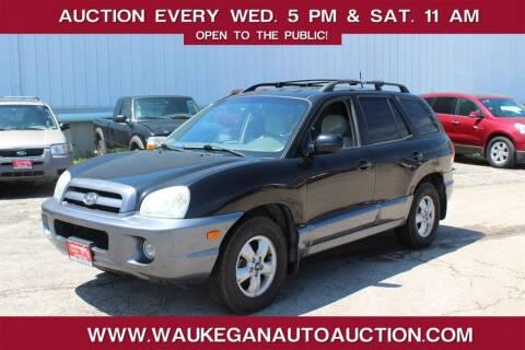2006 Hyundai Santa Fe for sale at Waukegan Auto Auction in Waukegan IL