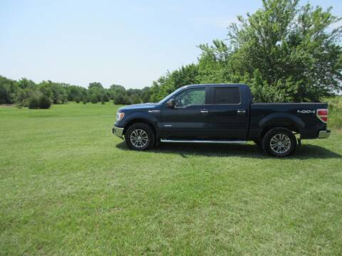 2013 Ford F-150 for sale at Truck World in Augusta KS