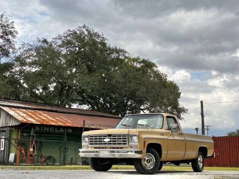 1976 Chevrolet C/K 10 Series for sale at OVE Car Trader Corp in Tampa FL