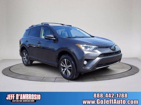 2018 Toyota RAV4 for sale at Jeff D'Ambrosio Auto Group in Downingtown PA