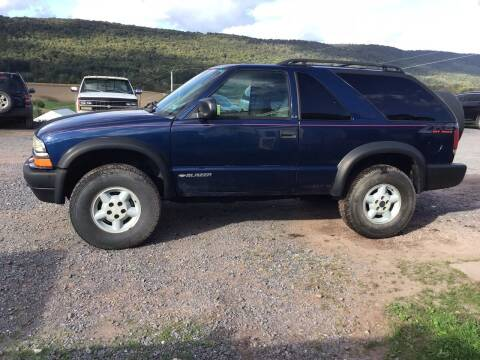 1999 Chevrolet Blazer for sale at Troys Auto Sales in Dornsife PA