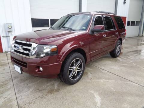 2011 Ford Expedition for sale at Lewin Yount Auto Sales in Winchester VA