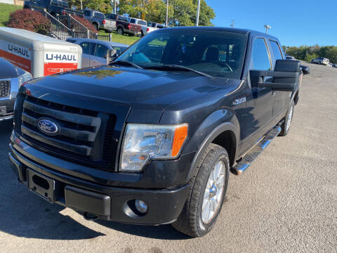 2010 Ford F-150 for sale at Ball Pre-owned Auto in Terra Alta WV