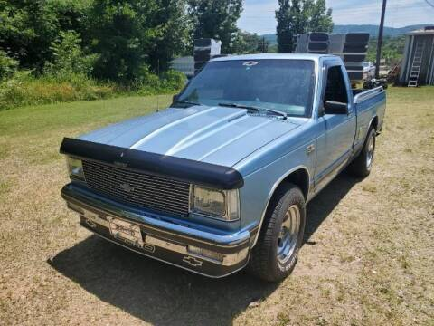 1985 Chevrolet S-10 for sale at Classic Car Deals in Cadillac MI