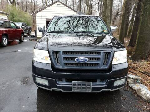 2004 Ford F-150 for sale at GALANTE AUTO SALES LLC in Aston PA