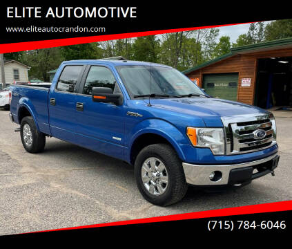 2011 Ford F-150 for sale at ELITE AUTOMOTIVE in Crandon WI