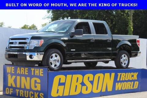 2014 Ford F-150 for sale at Gibson Truck World in Sanford FL