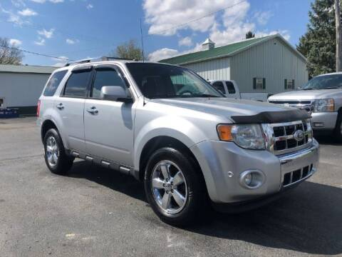 2011 Ford Escape for sale at Tip Top Auto North in Tipp City OH