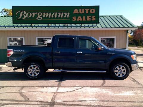 2013 Ford F-150 for sale at Borgmann Auto Sales in Norfolk NE
