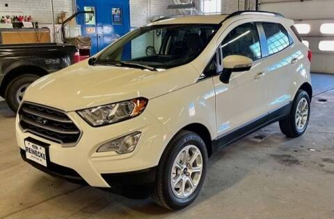 2021 Ford EcoSport for sale at Reinecke Motor Co in Schuyler NE