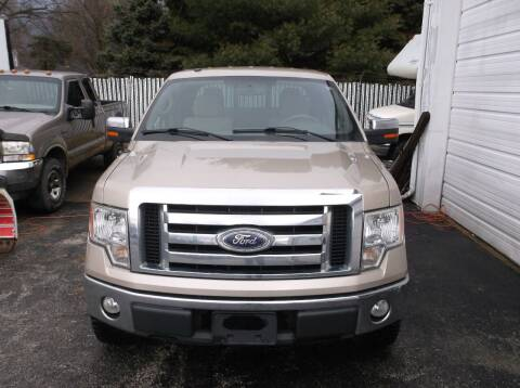 2010 Ford F-150 for sale at M & N CARRAL in Osceola IN