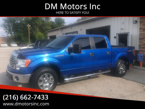 2010 Ford F-150 for sale at DM Motors Inc in Maple Heights OH