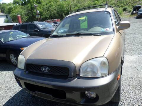 2002 Hyundai Santa Fe for sale at FERNWOOD AUTO SALES in Nicholson PA