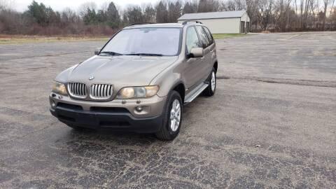 2005 BMW X5 for sale at Caruzin Motors in Flint MI
