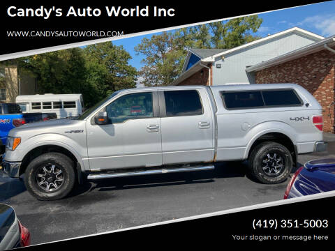 2010 Ford F-150 for sale at Candy's Auto World Inc in Toledo OH