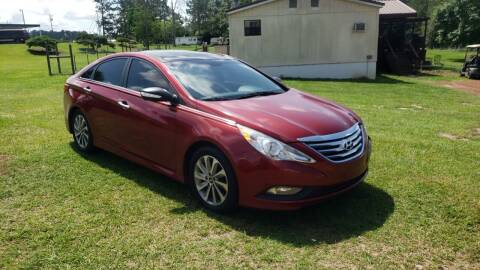 2014 Hyundai Sonata for sale at Lakeview Auto Sales LLC in Sycamore GA