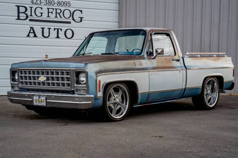 1980 Chevrolet C/K 10 Series for sale at Big Frog Auto in Cleveland TN