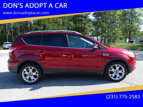 2015 Ford Escape for sale at DON'S ADOPT A CAR in Cadillac MI
