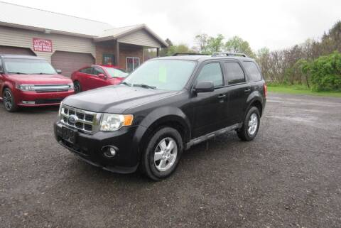 2010 Ford Escape for sale at Clearwater Motor Car in Jamestown NY