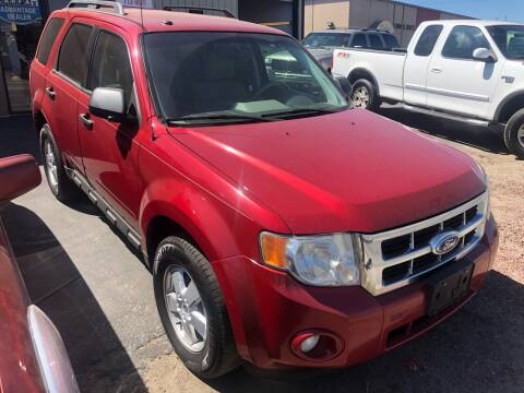 2010 Ford Escape for sale at City Auto Sales in Sparks NV