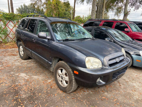 2006 Hyundai Santa Fe for sale at Lee Auto Group Tampa in Tampa FL