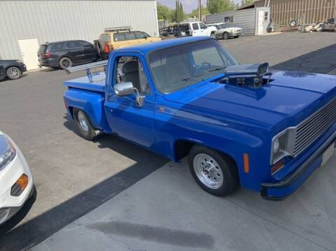 1978 Chevrolet C/K 10 Series for sale at Classic Car Deals in Cadillac MI