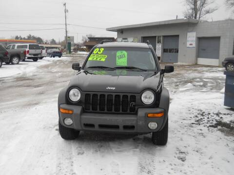 2003 Jeep Liberty for sale at Shaw Motor Sales in Kalkaska MI