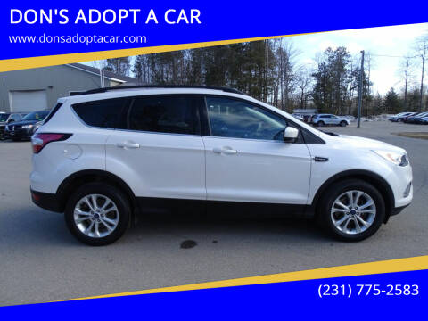 2017 Ford Escape for sale at DON'S ADOPT A CAR in Cadillac MI