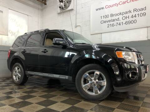 2009 Ford Escape for sale at County Car Credit in Cleveland OH