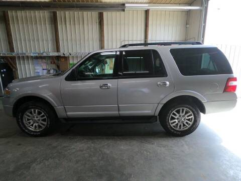 2012 Ford Expedition for sale at Alpha Auto in Toronto SD