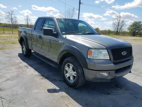 2004 Ford F-150 for sale at HEDGES USED CARS in Carleton MI