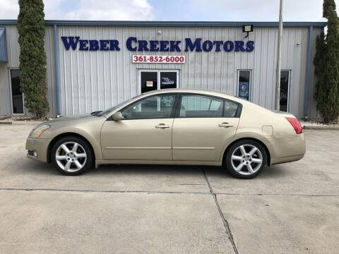 2004 Nissan Maxima for sale at Weber Creek Motors in Corpus Christi TX