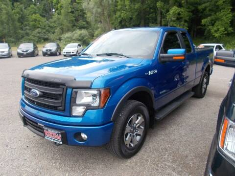 2013 Ford F-150 for sale at Dansville Radiator in Dansville NY