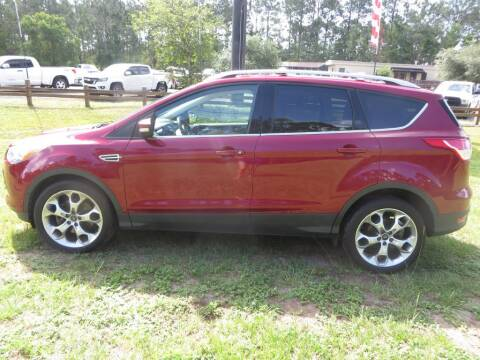 2014 Ford Escape for sale at Ward's Motorsports in Pensacola FL