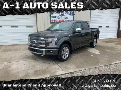 2017 Ford F-150 for sale at A-1 AUTO SALES in Mansfield OH