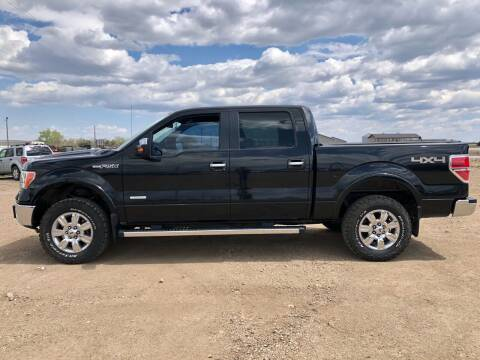 2012 Ford F-150 for sale at TnT Auto Plex in Platte SD