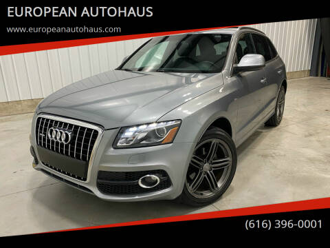 2011 Audi Q5 for sale at EUROPEAN AUTOHAUS in Holland MI
