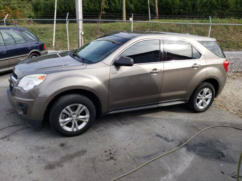2010 Chevrolet Equinox for sale at Green Tree Motors in Elizabethton TN