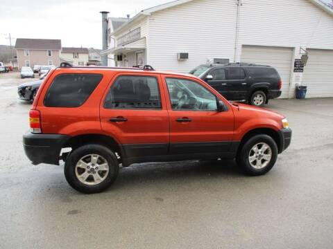 2006 Ford Escape for sale at ROUTE 119 AUTO SALES & SVC in Homer City PA
