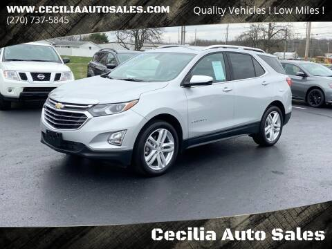 2019 Chevrolet Equinox for sale at Cecilia Auto Sales in Elizabethtown KY
