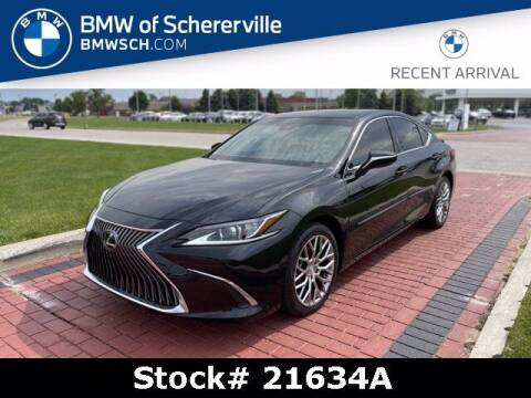 2019 Lexus ES 350 for sale at BMW of Schererville in Shererville IN