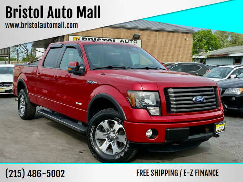 2012 Ford F-150 for sale at Bristol Auto Mall in Levittown PA
