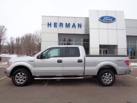 2013 Ford F-150 for sale at Herman Motors in Luverne MN