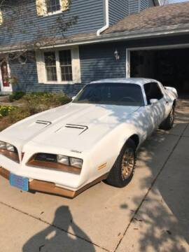 1978 Pontiac Firebird for sale at Classic Car Deals in Cadillac MI